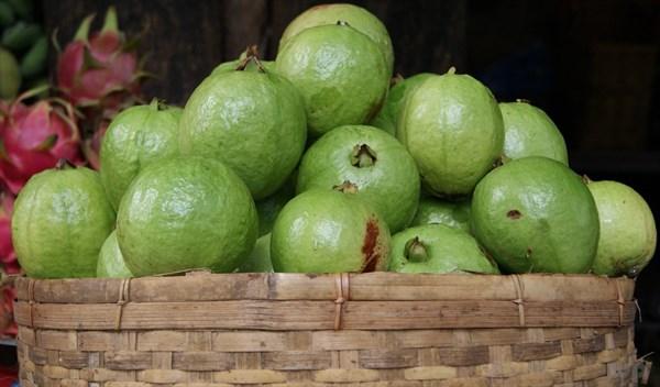 十大低糖水果排行榜,女人应该多吃水果-第4张图片-爱薇女性网