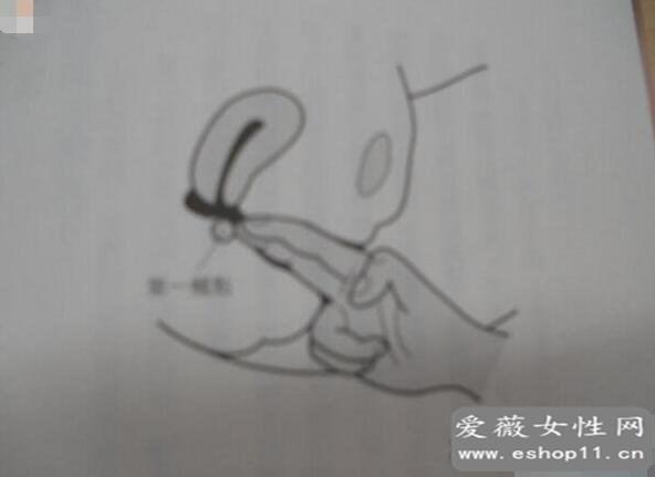 日本第一男优加藤鹰,让人潮吹不止的加藤鹰之手教学解析-第3张图片-爱薇女性网