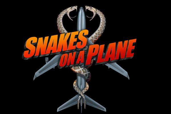 盘点十部关于蛇的电影,惊悚刺激又好看-第5张图片-爱薇女性网