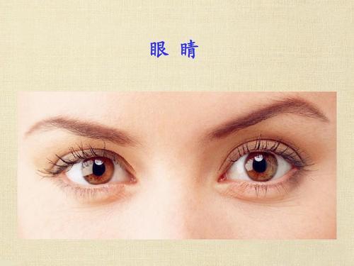 眼睛事实上很比较敏感,要想保养好,锲而不舍做好这5件事很重要-第2张图片-爱薇女性网