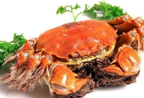 吃了螃蟹过敏如何处理?3个吃螃蟹过敏得紧急处理方法-第1张图片-爱薇女性网
