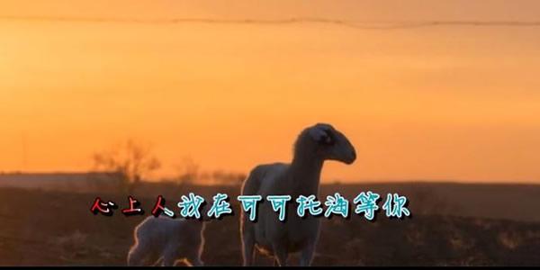 可可托海的牧羊人原唱-第2张图片-爱薇女性网