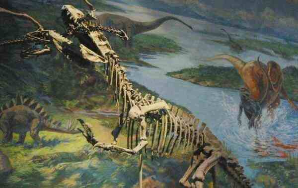 中华盗龙:体长达8米的新疆大型食肉恐龙,生活在距今1.44亿年前-第2张图片-爱薇女性网