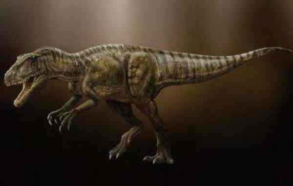 中华盗龙:体长达8米的新疆大型食肉恐龙,生活在距今1.44亿年前-第3张图片-爱薇女性网