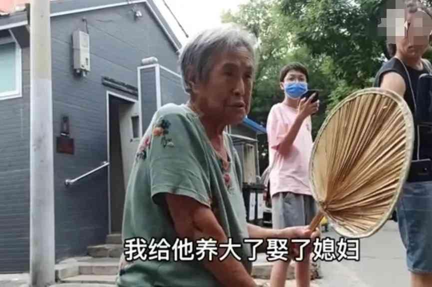 抱养儿子引孽债,北京胡同大妈哭诉养子要房-第2张图片-爱薇女性网