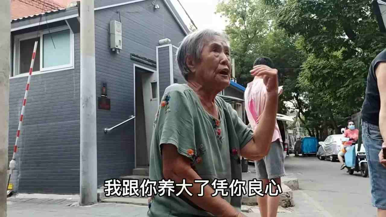 抱养儿子引孽债,北京胡同大妈哭诉养子要房-第4张图片-爱薇女性网