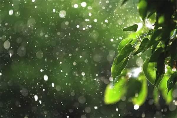 梅雨期是什么时候:每年的六月至七月(持续一个月)