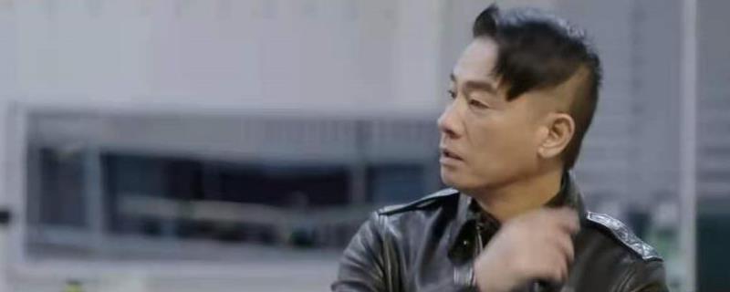 陈小春大湾区代表是什么梗?-第1张图片-爱薇女性网