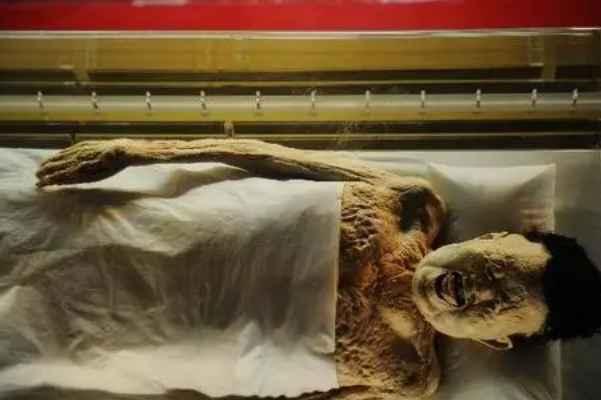 马王堆女尸为什么不腐烂:尸体做了防腐处理(墓室封闭程度高)